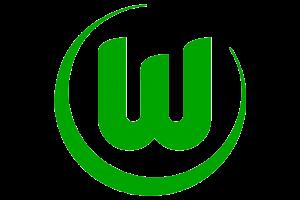 logo_vfl_wolfsburg